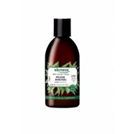 Alkmene Bio Aloe Vera dušigeel aloe vera 005402
