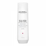 Goldwell Hõbešampoon blondidele ja hallidele juustele külma tooni säilitamiseks