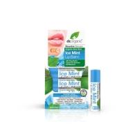 Dr.Organic Aloe Vera huulepalsam Jäine Mint  5,7 ml
