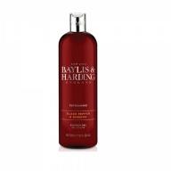 Baylis & Harding dušigeel meestele must pipar-ingver 137