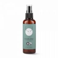 Simple Goods Hygiene Spray Aloe Vera hügieenisprei 100ml
