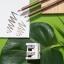 Artdeco Green Couture Natural kulmupliiats 5 driftwood